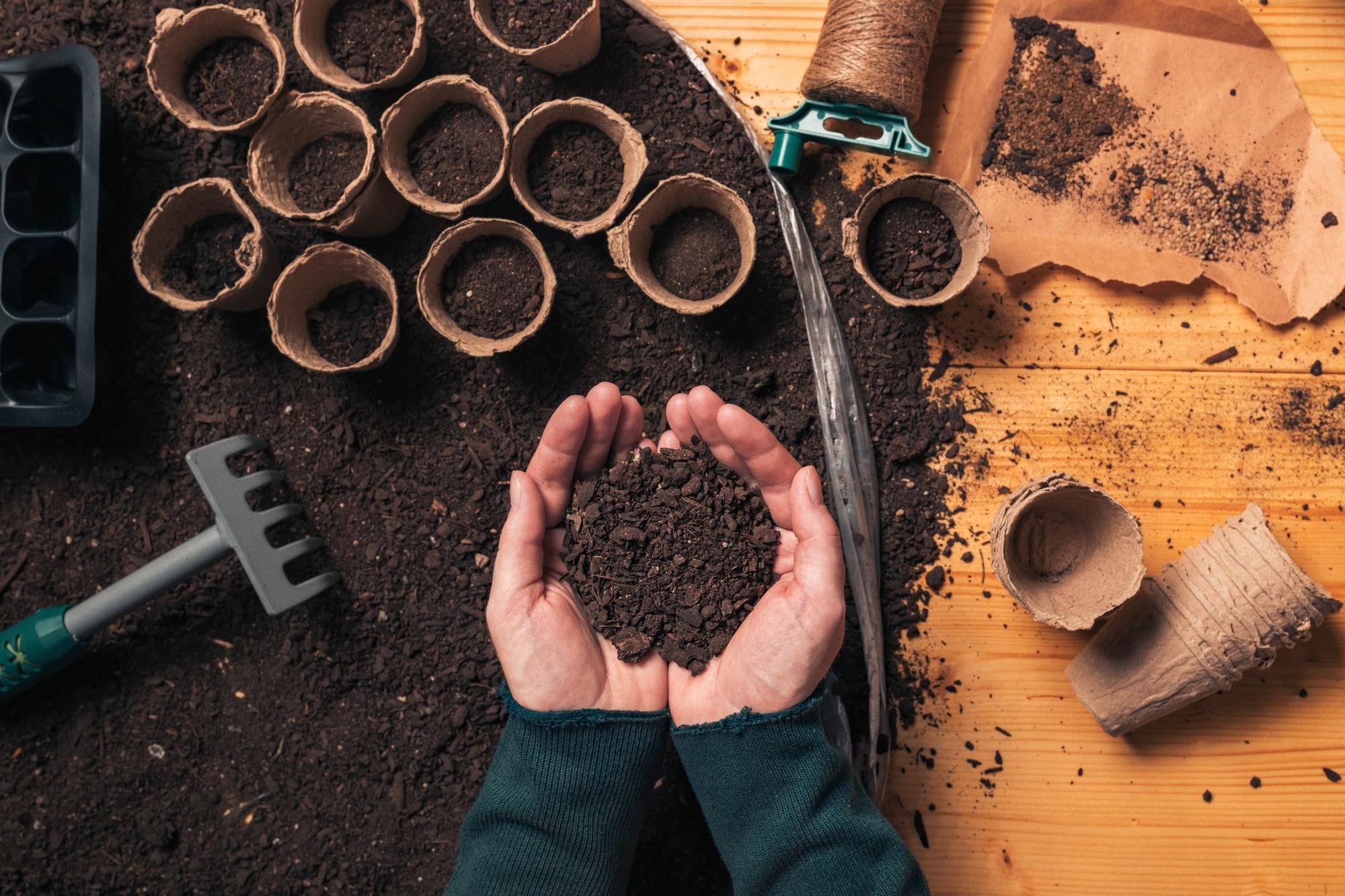 Gardener handful of soil in cupped hands